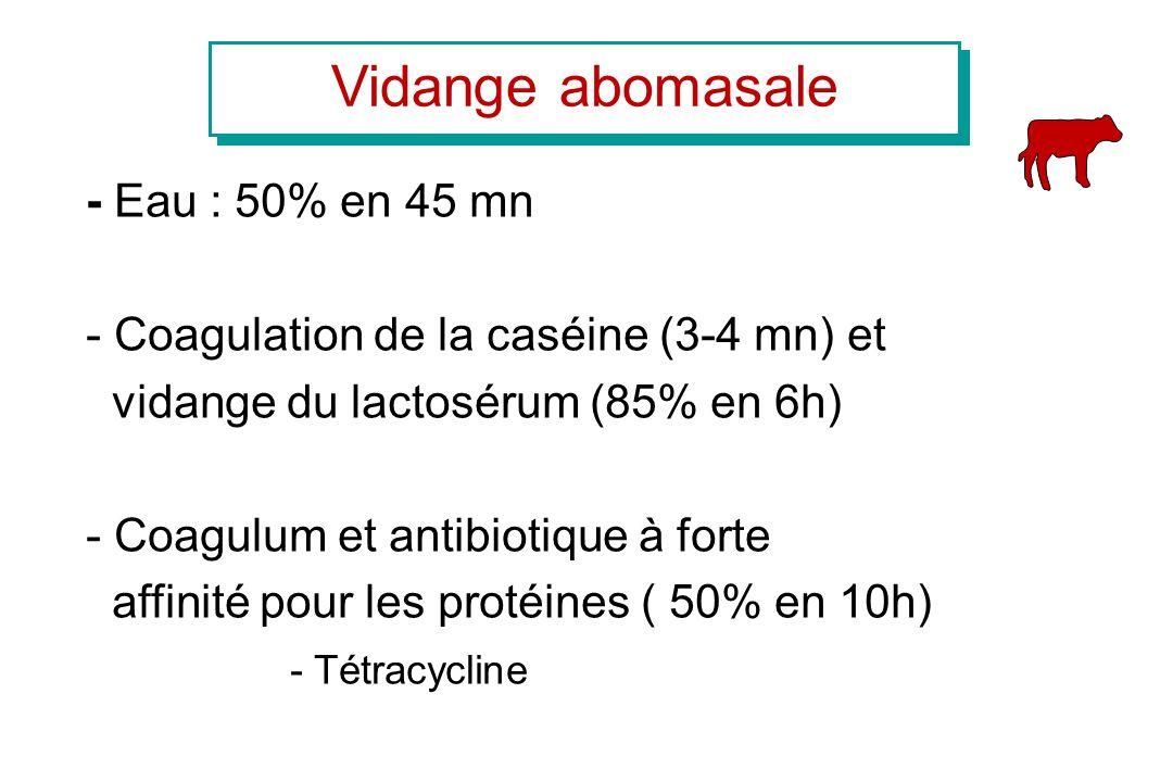 Vidange abomasale - Eau : 50% en 45 mn - Coagulation de la caséine (3-4 mn) et vidange du lactosérum (85% en 6h) - Coagulum et antibiotique à forte af