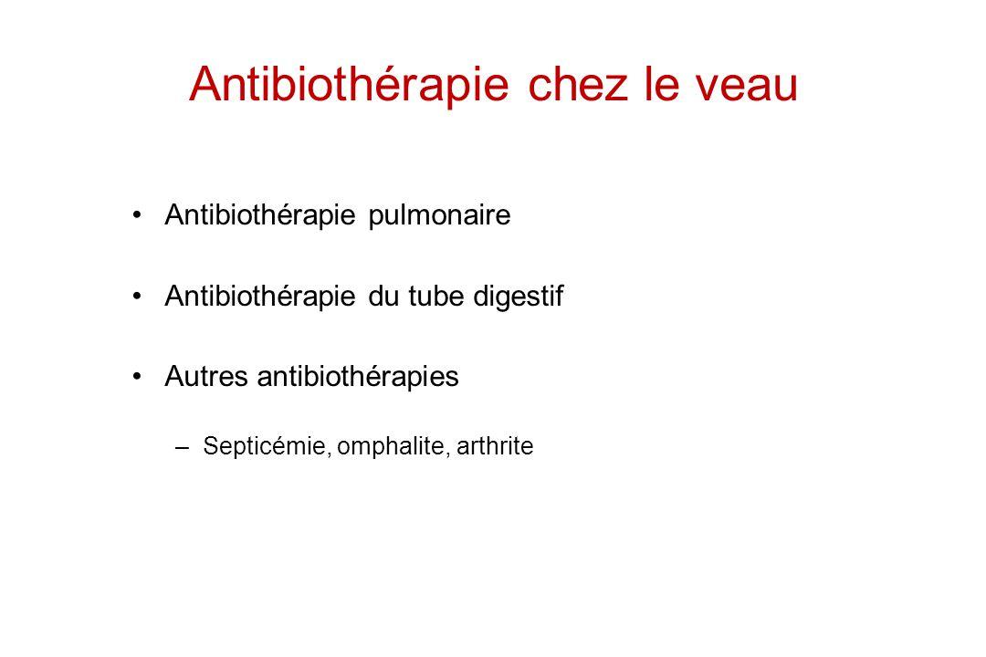 Antibiothérapie chez le veau Antibiothérapie pulmonaire Antibiothérapie du tube digestif Autres antibiothérapies –Septicémie, omphalite, arthrite