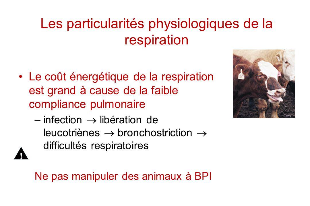 Les particularités physiologiques de la respiration Le coût énergétique de la respiration est grand à cause de la faible compliance pulmonaire –infect