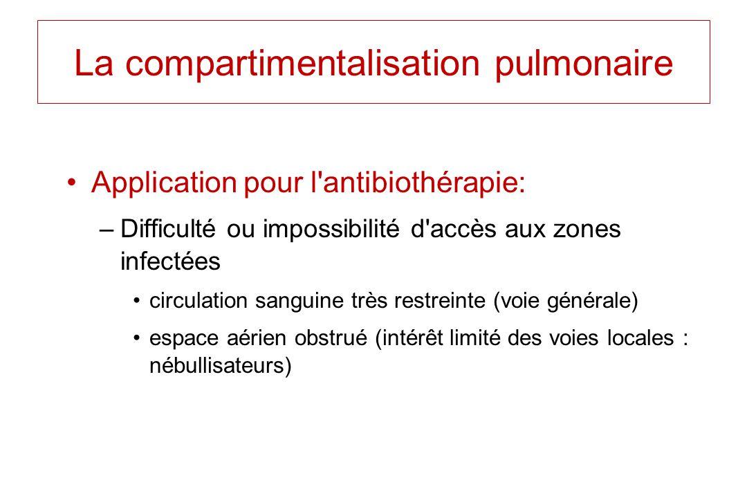 Application pour l'antibiothérapie: –Difficulté ou impossibilité d'accès aux zones infectées circulation sanguine très restreinte (voie générale) espa