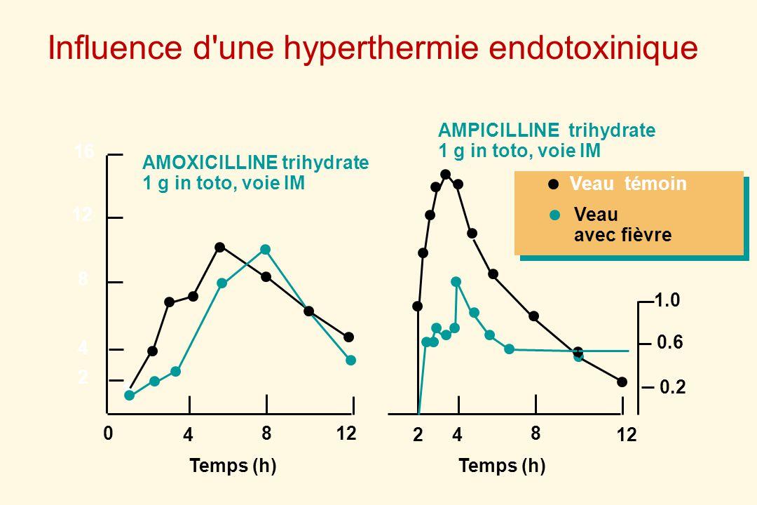 16 12 8 4 8 Temps (h) 4 AMOXICILLINE trihydrate 1 g in toto, voie IM 0 2 8 12 Temps (h) 4 AMPICILLINE trihydrate 1 g in toto, voie IM 2 0.2 0.6 1.0 Ve