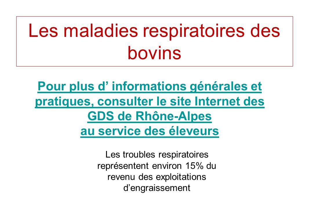 Les maladies respiratoires des bovins Pour plus d informations générales et pratiques, consulter le site Internet des GDS de Rhône-Alpes au service de