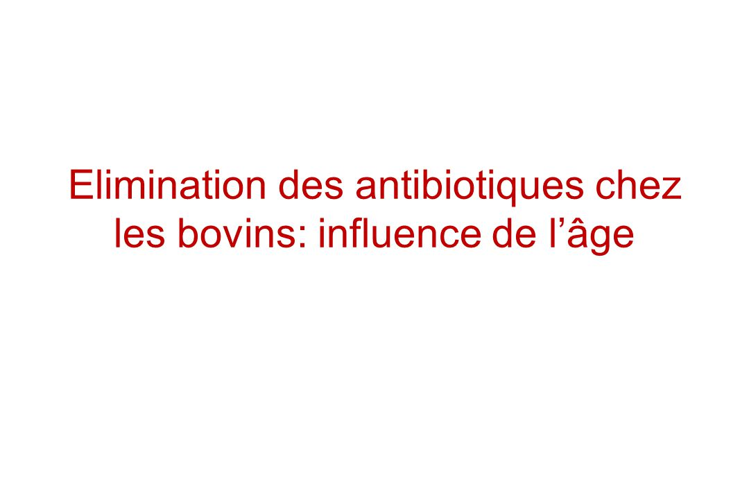 Elimination des antibiotiques chez les bovins: influence de lâge
