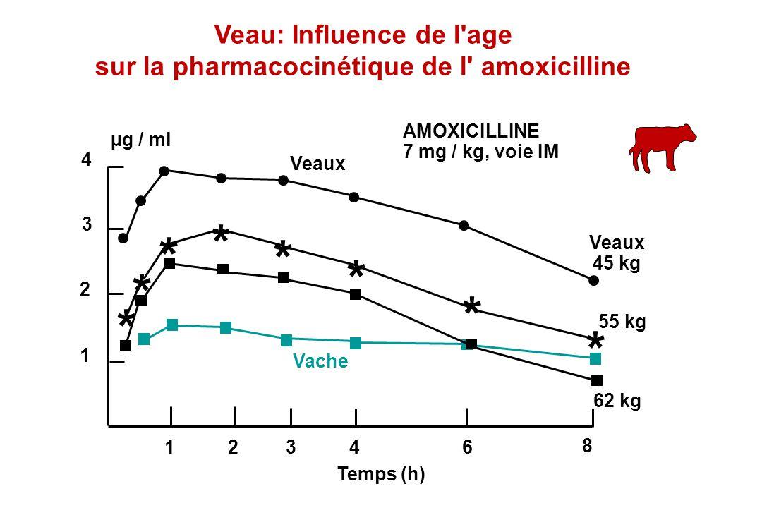 4 3 2 1 24 8 µg / ml Temps (h) 136 * * * * * * * * AMOXICILLINE 7 mg / kg, voie IM Veaux 45 kg 55 kg 62 kg Vache Veaux Veau: Influence de l'age sur la