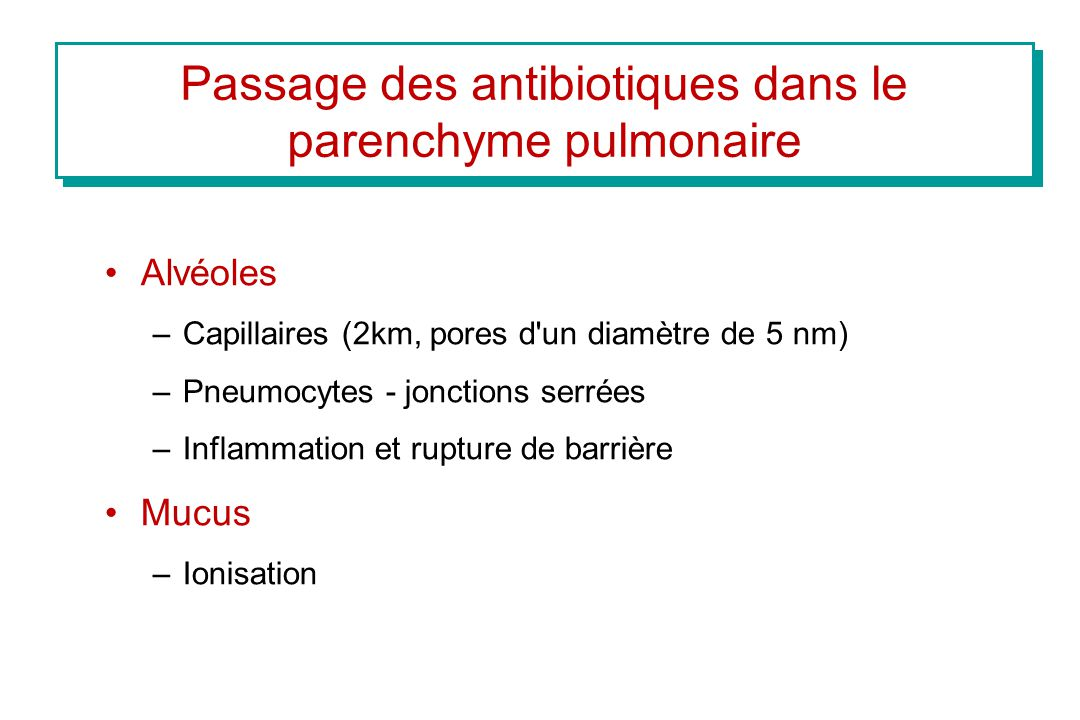 Passage des antibiotiques dans le parenchyme pulmonaire Alvéoles –Capillaires (2km, pores d'un diamètre de 5 nm) –Pneumocytes - jonctions serrées –Inf