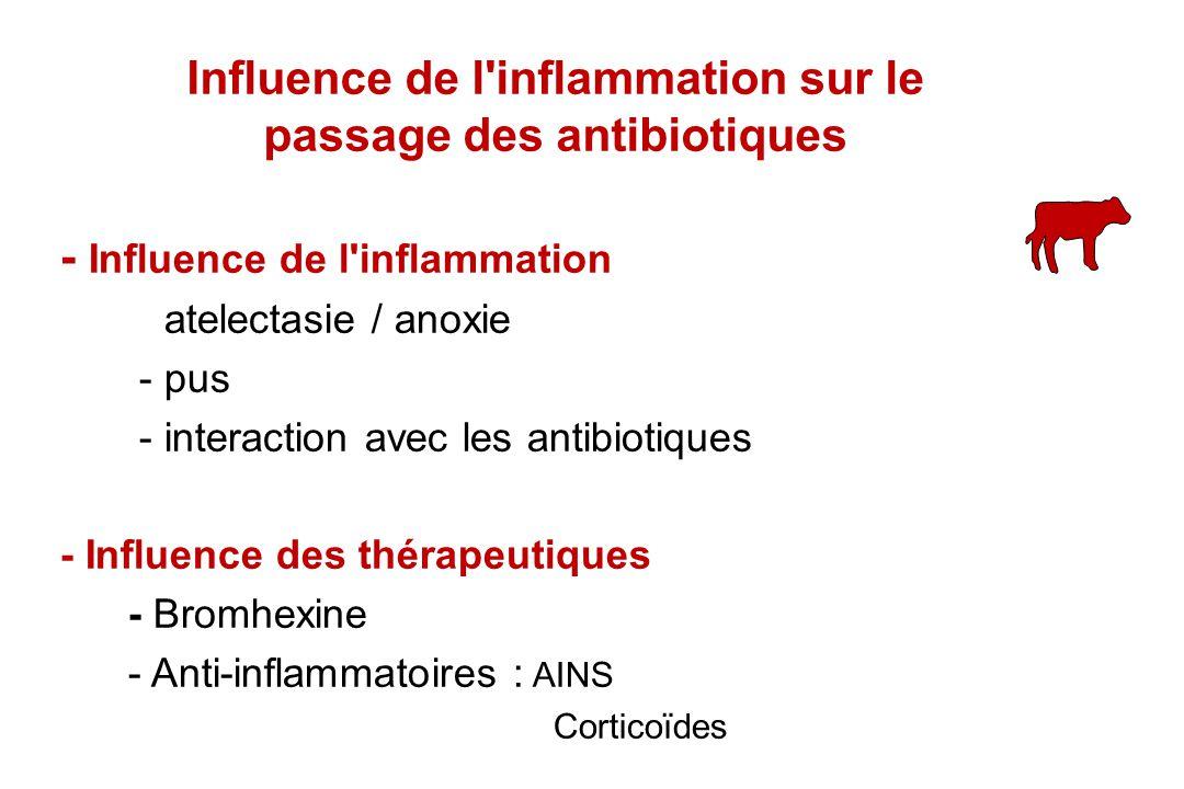 - Influence de l'inflammation - atelectasie / anoxie - pus - interaction avec les antibiotiques - Influence des thérapeutiques - Bromhexine - Anti-inf