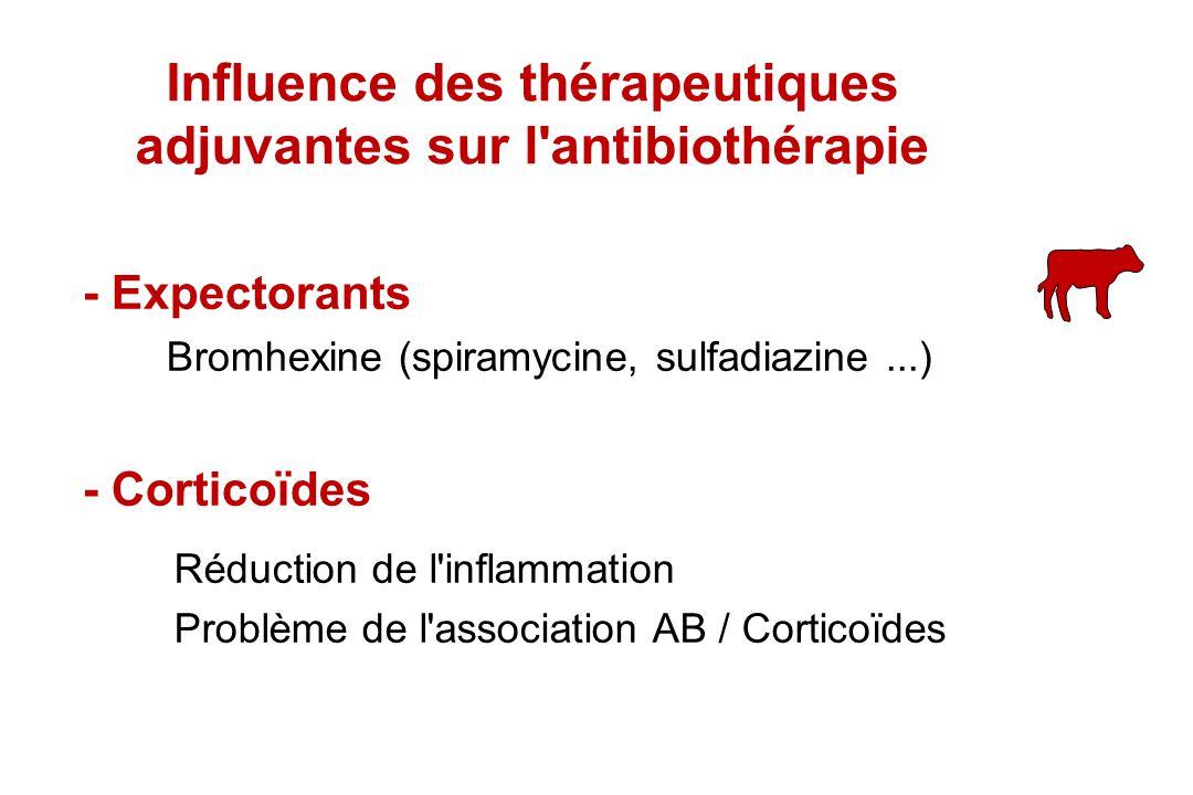 - Expectorants - Corticoïdes Bromhexine (spiramycine, sulfadiazine...) Réduction de l'inflammation Problème de l'association AB / Corticoïdes Influenc