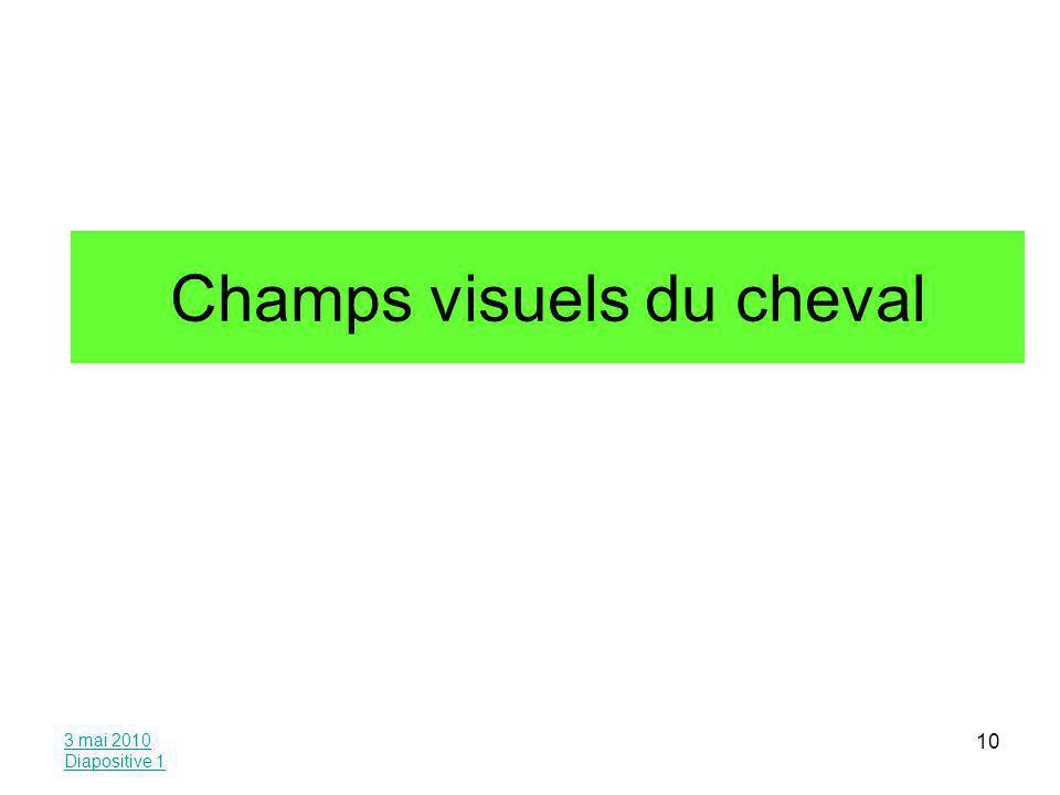 3 mai 2010 Diapositive 1 10 Champs visuels du cheval