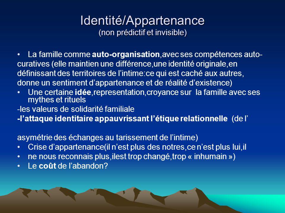 Identité/Appartenance (non prédictif et invisible) La famille comme auto-organisation,avec ses compétences auto- curatives (elle maintien une différen