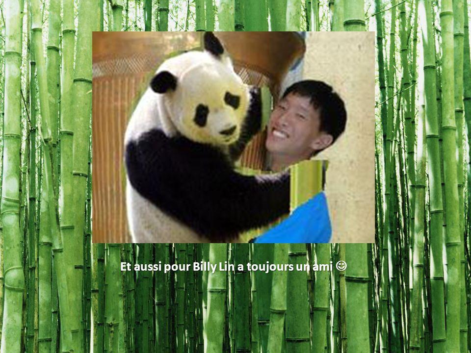 Et aussi pour Billy Lin a toujours un ami Et aussi pour Billy Lin a toujours un ami