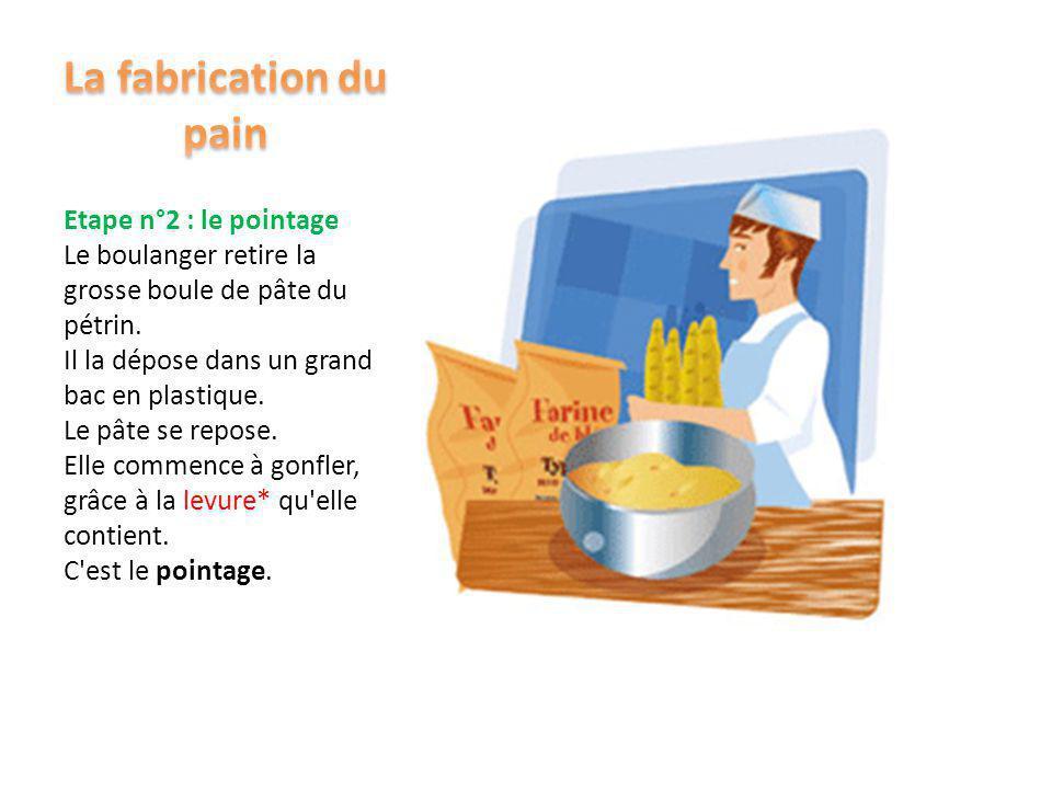 Etape n°1 : le pétrissage Le boulanger met dans son pétrin : - de la farine, - de l'eau, - du sel, - de la levure.