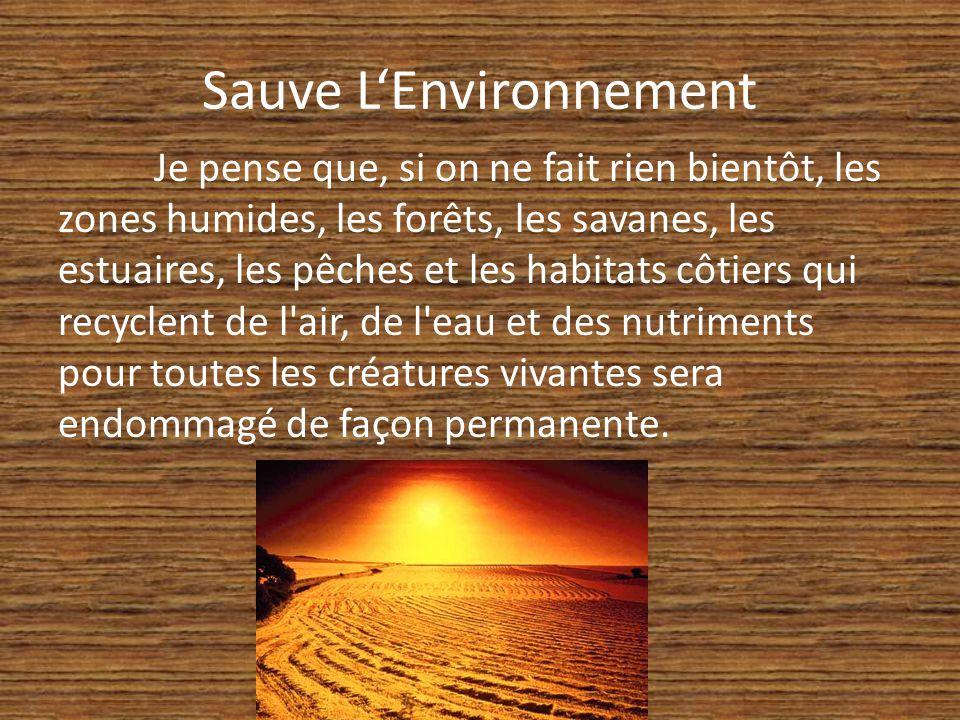 Sauve LEnvironnement Je pense que, si on ne fait rien bientôt, les zones humides, les forêts, les savanes, les estuaires, les pêches et les habitats côtiers qui recyclent de l air, de l eau et des nutriments pour toutes les créatures vivantes sera endommagé de façon permanente.