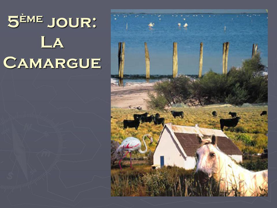 6 ème Jour: Fontaine de Vaucluse