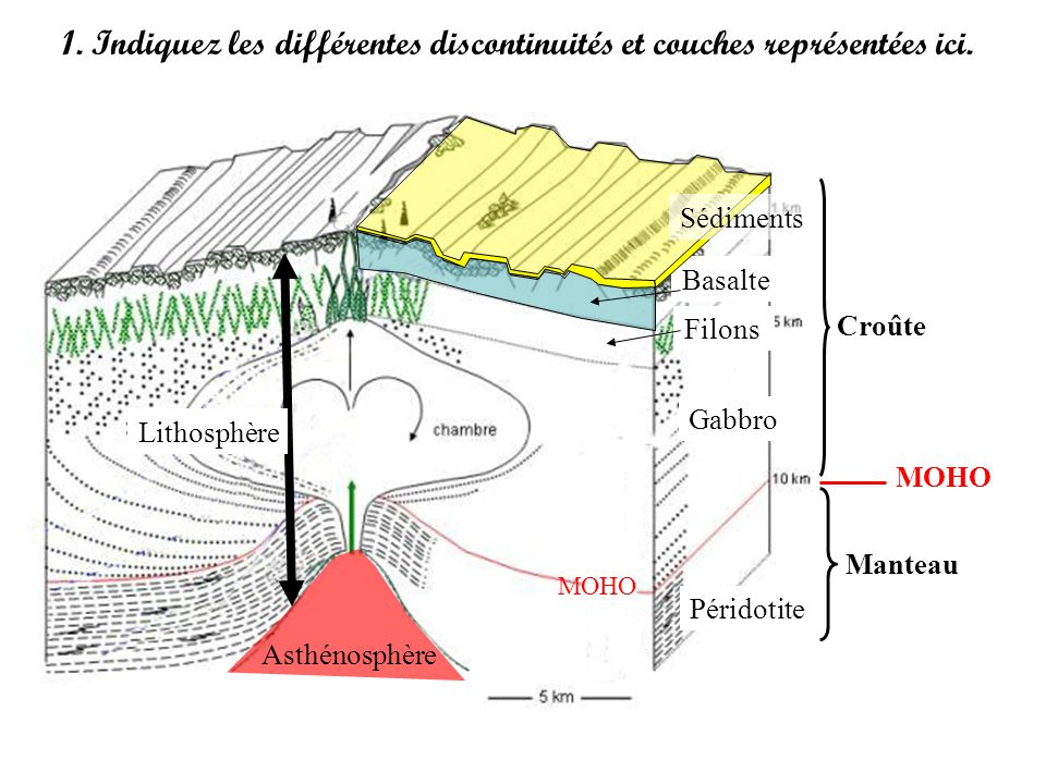 1. Indiquez les différentes discontinuités et couches représentées ici. Croûte Manteau MOHO Asthénosphère Lithosphère Basalte Filons Gabbro Péridotite