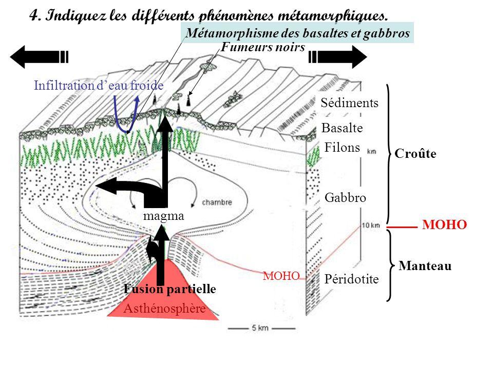 4. Indiquez les différents phénomènes métamorphiques. Croûte Manteau MOHO Asthénosphère Sédiments Basalte Filons Gabbro Péridotite Fusion partielle ma