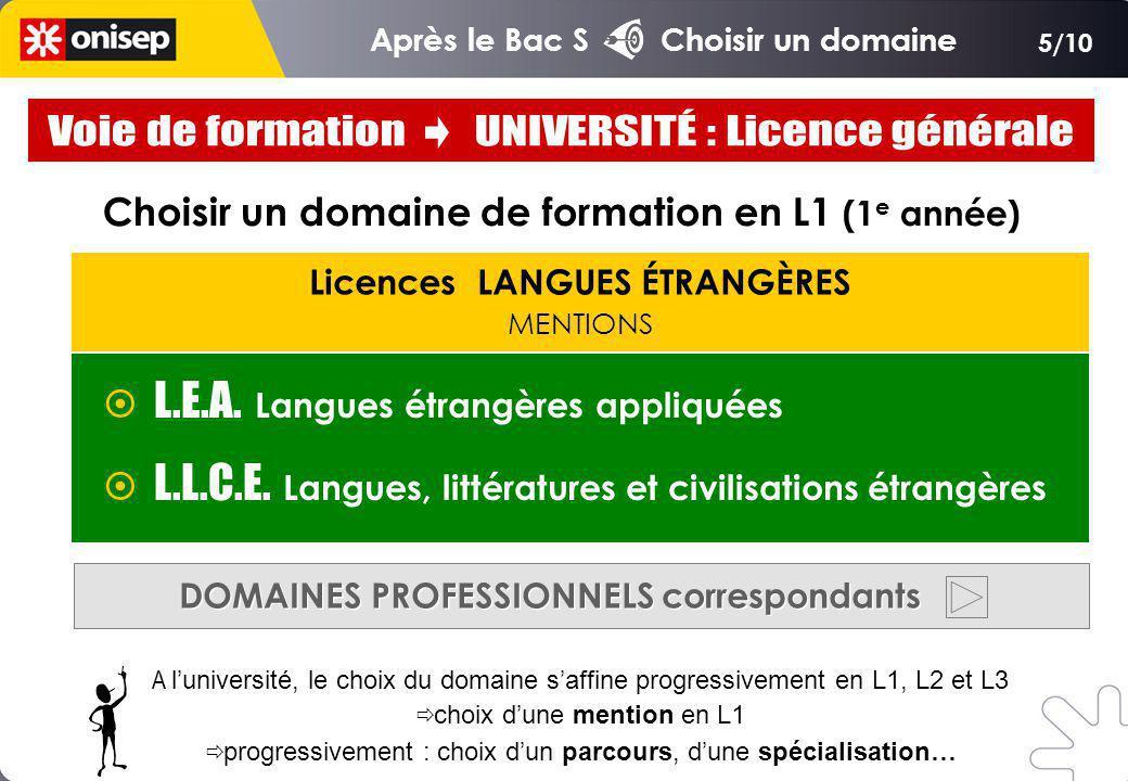 Licences LANGUES ÉTRANGÈRES MENTIONS Choisir un domaine de formation en L1 (1 e année) L.E.A.