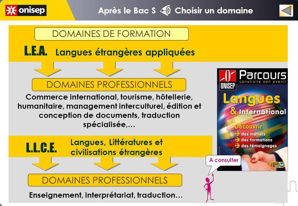 DOMAINES PROFESSIONNELS DOMAINES DE FORMATION L.E.A.