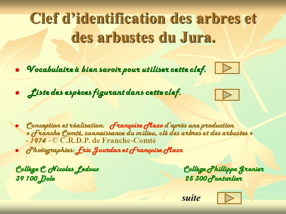Clef didentification des arbres et des arbustes du Jura. Vocabulaire à bien savoir pour utiliser cette clef. Liste des espèces figurant dans cette cle