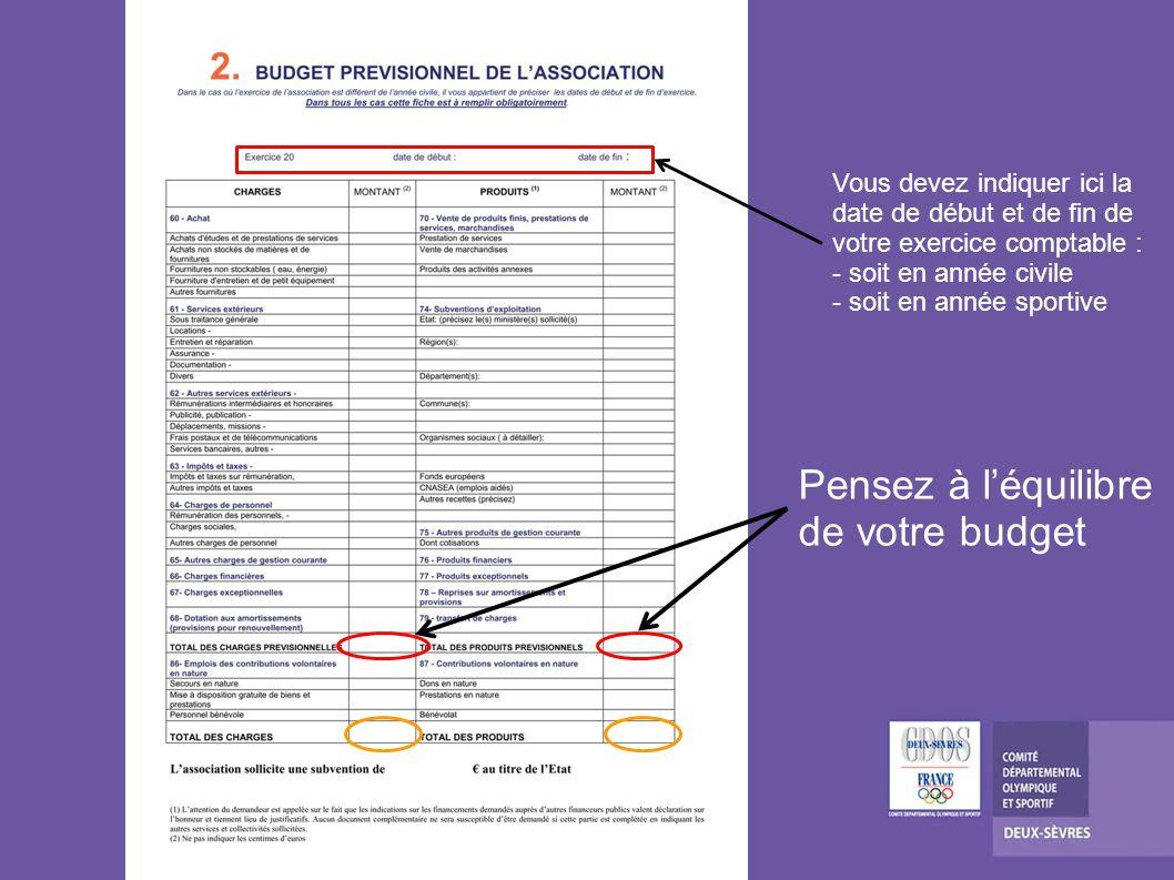 Ces montants sont le cumul de vos demandes CNDS des fiches 3.2 Préférez remplir le budget prévisionnel de vos projets dactions avant le budget prévisionnel du comité ci-contre.