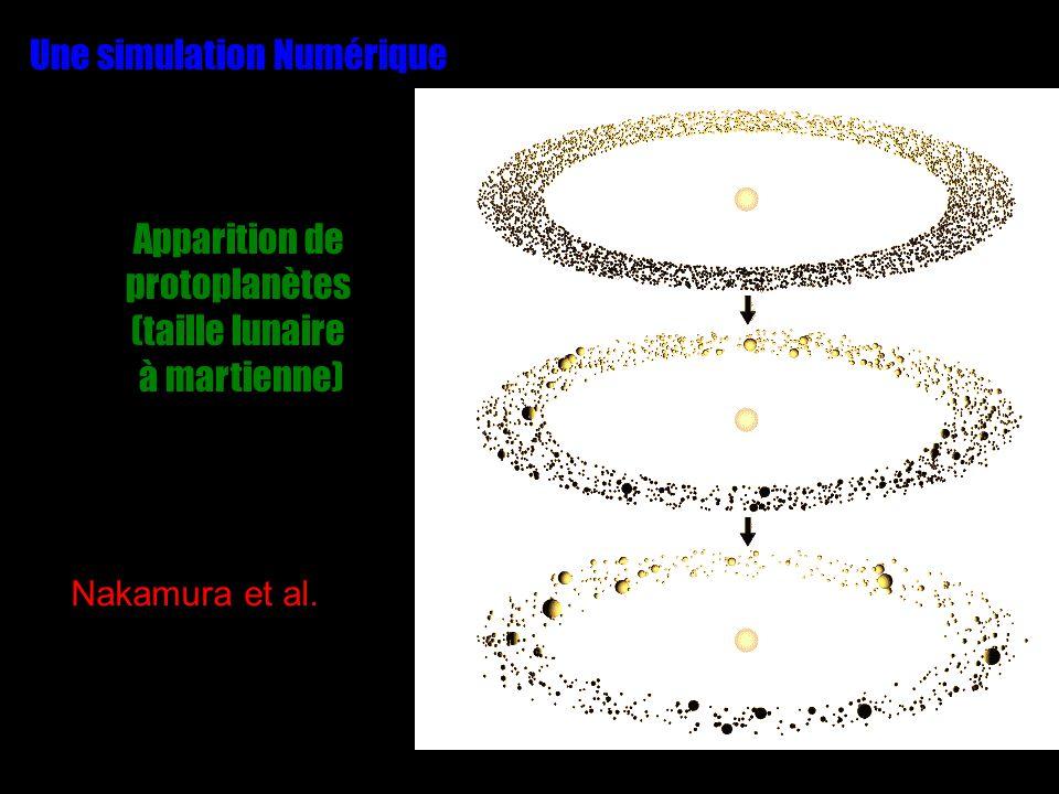 Une simulation Numérique Apparition de protoplanètes (taille lunaire à martienne) Nakamura et al.