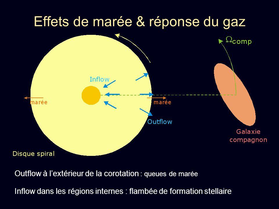 Effets de marée & réponse du gaz Outflow à lextérieur de la corotation : queues de marée Inflow dans les régions internes : flambée de formation stell