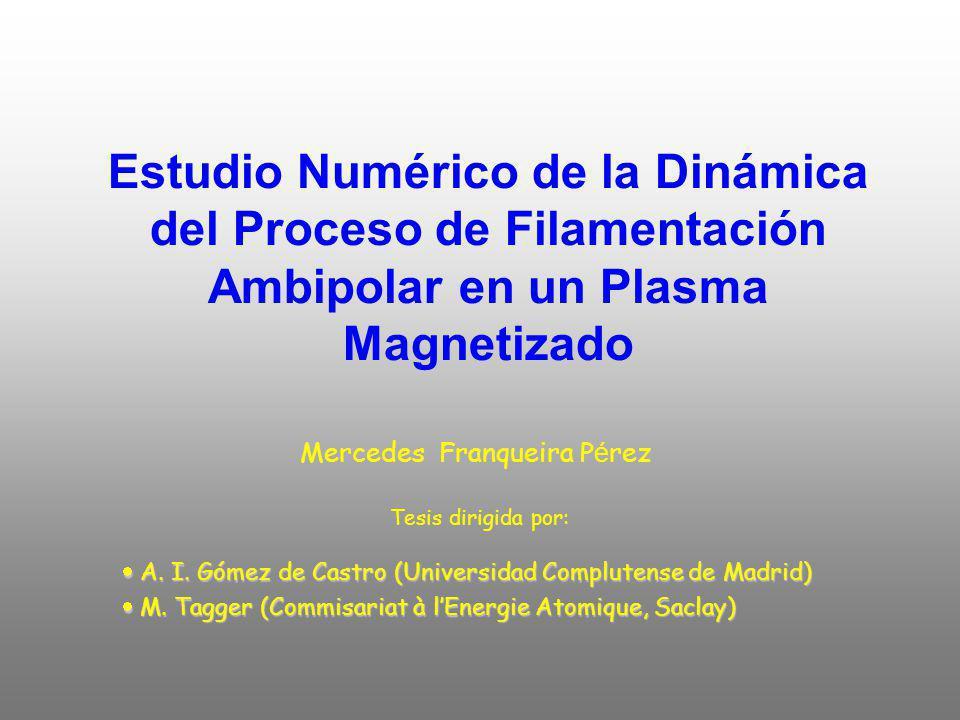 Estudio Numérico de la Dinámica del Proceso de Filamentación Ambipolar en un Plasma Magnetizado Mercedes Franqueira P é rez Tesis dirigida por: A.