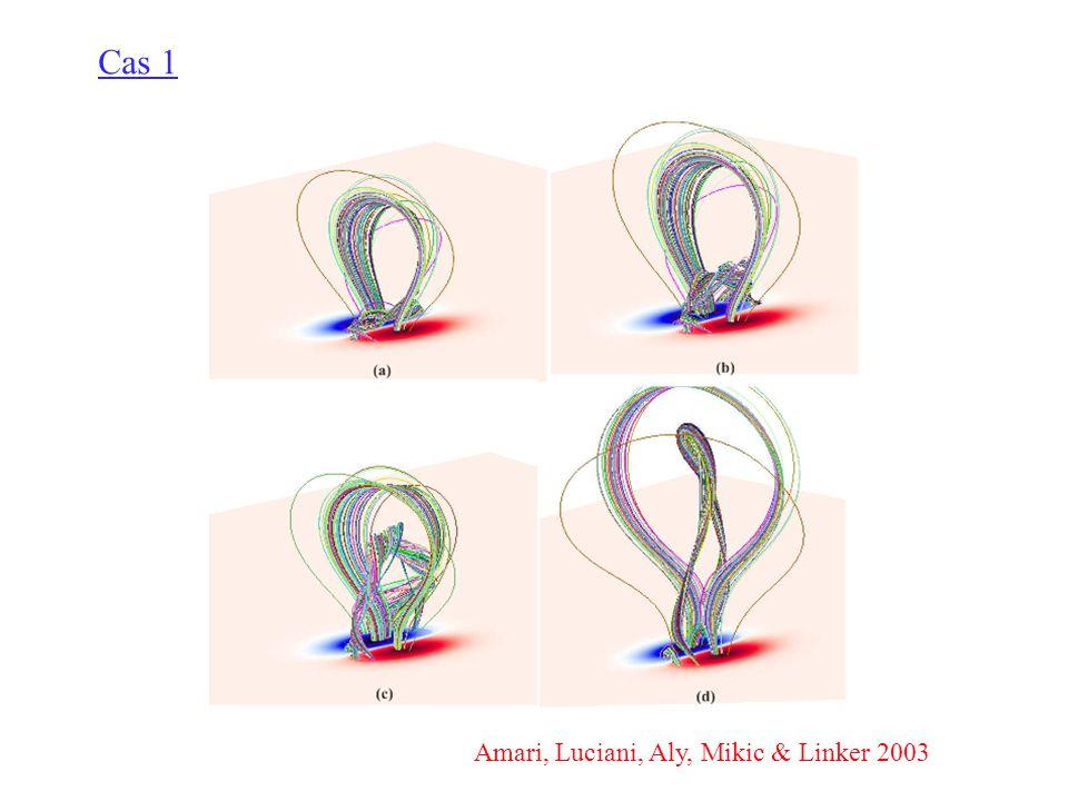 Amari, Luciani, Aly, Mikic & Linker 2003 Cas 1