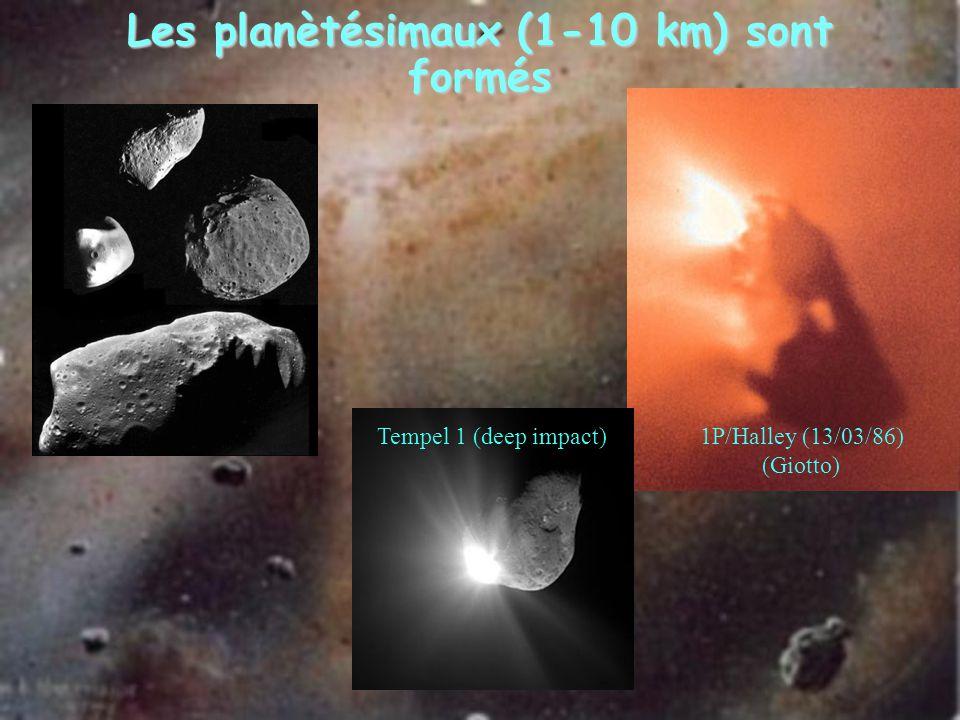 Les planètésimaux (1-10 km) sont formés 1P/Halley (13/03/86) (Giotto) Tempel 1 (deep impact)