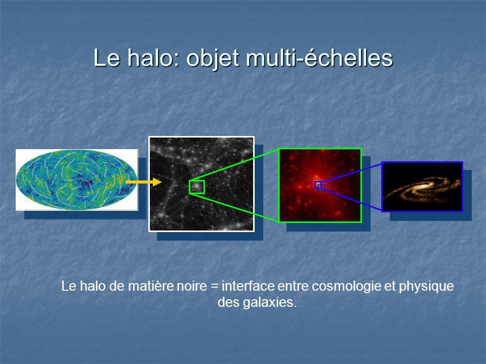 Le halo: objet multi-échelles Le halo de matière noire = interface entre cosmologie et physique des galaxies.