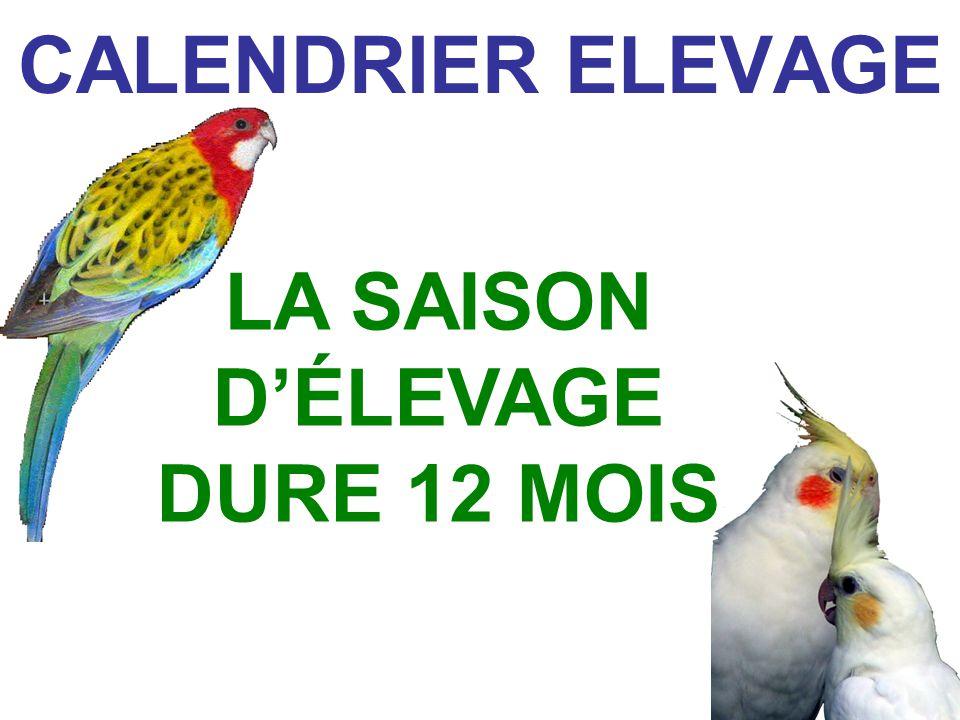 CALENDRIER ELEVAGE LA SAISON DÉLEVAGE DURE 12 MOIS