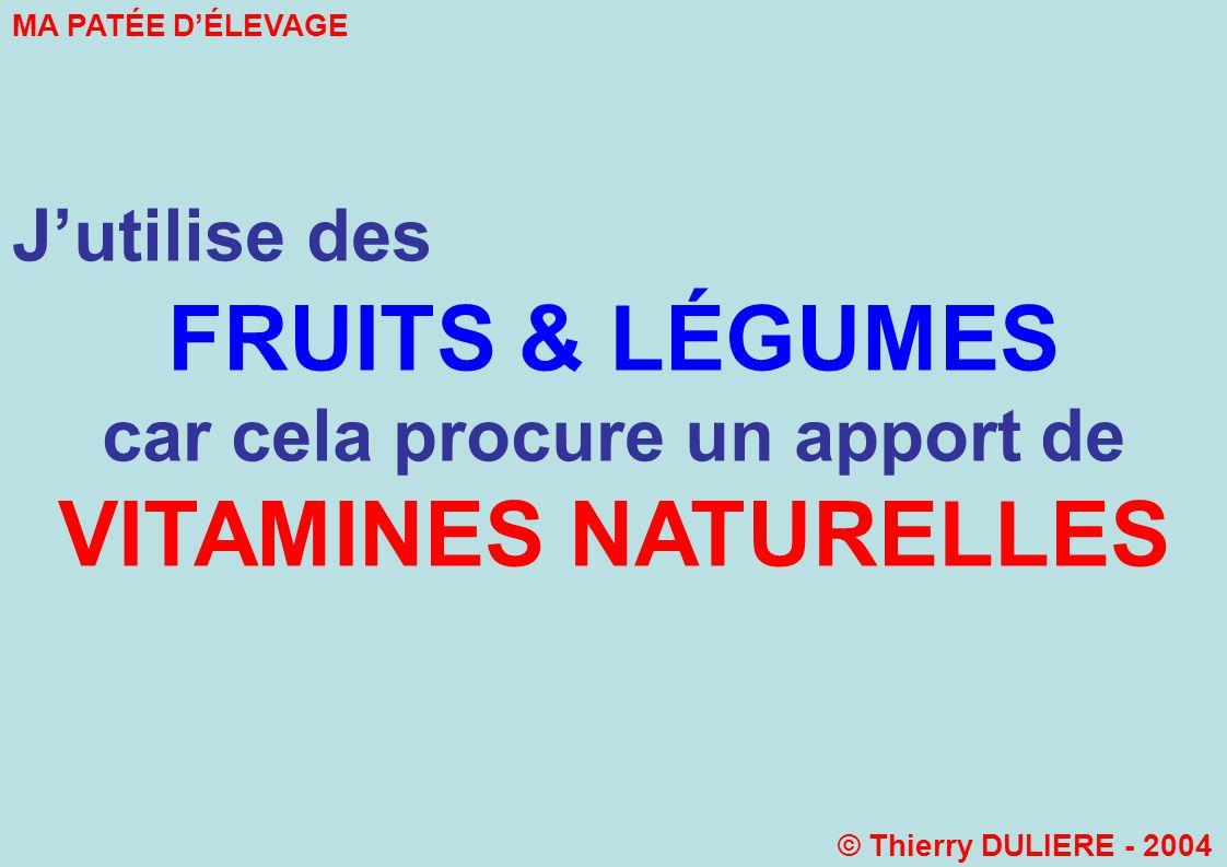 Jutilise des FRUITS & LÉGUMES car cela procure un apport de VITAMINES NATURELLES MA PATÉE DÉLEVAGE © Thierry DULIERE - 2004