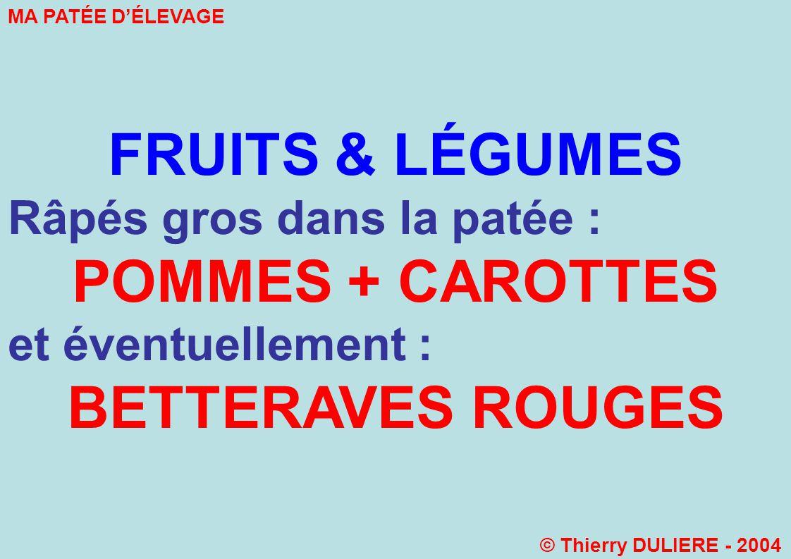 FRUITS & LÉGUMES Râpés gros dans la patée : POMMES + CAROTTES et éventuellement : BETTERAVES ROUGES MA PATÉE DÉLEVAGE © Thierry DULIERE - 2004