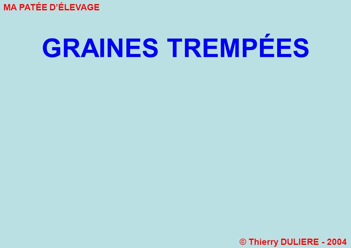 GRAINES TREMPÉES MA PATÉE DÉLEVAGE © Thierry DULIERE - 2004