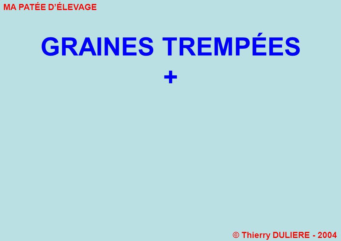 GRAINES TREMPÉES + MA PATÉE DÉLEVAGE © Thierry DULIERE - 2004