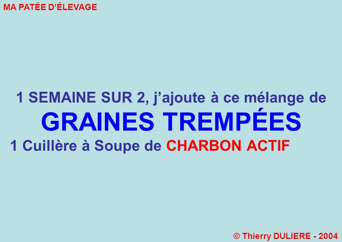 1 SEMAINE SUR 2, jajoute à ce mélange de GRAINES TREMPÉES 1 Cuillère à Soupe de CHARBON ACTIF MA PATÉE DÉLEVAGE © Thierry DULIERE - 2004