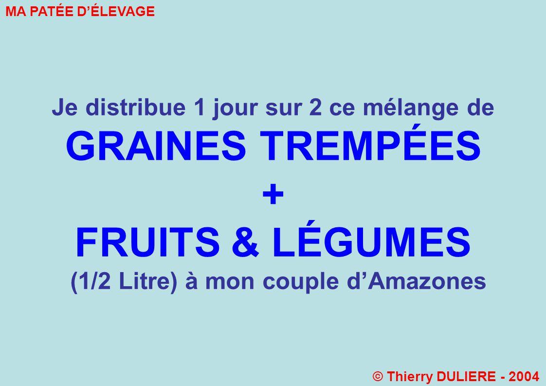 Je distribue 1 jour sur 2 ce mélange de GRAINES TREMPÉES + FRUITS & LÉGUMES (1/2 Litre) à mon couple dAmazones MA PATÉE DÉLEVAGE © Thierry DULIERE - 2004
