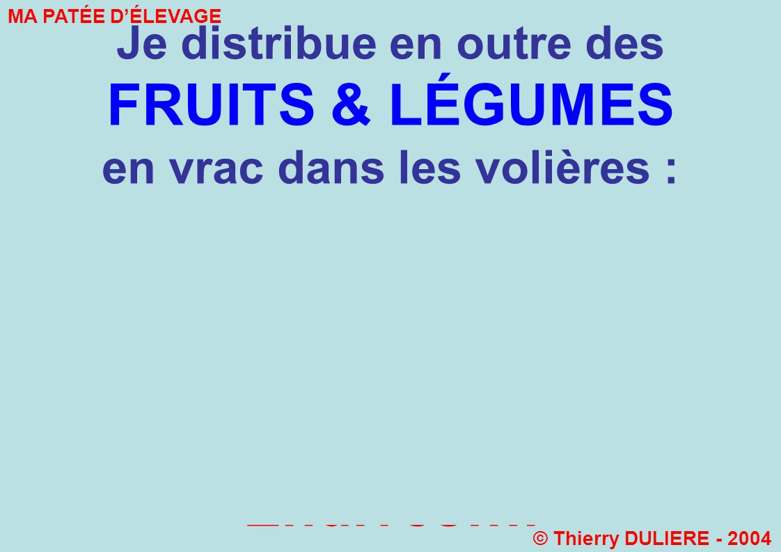 Je distribue en outre des FRUITS & LÉGUMES en vrac dans les volières : Betteraves Rouges Pommes Carottes Chous de Bruxelles Endives….