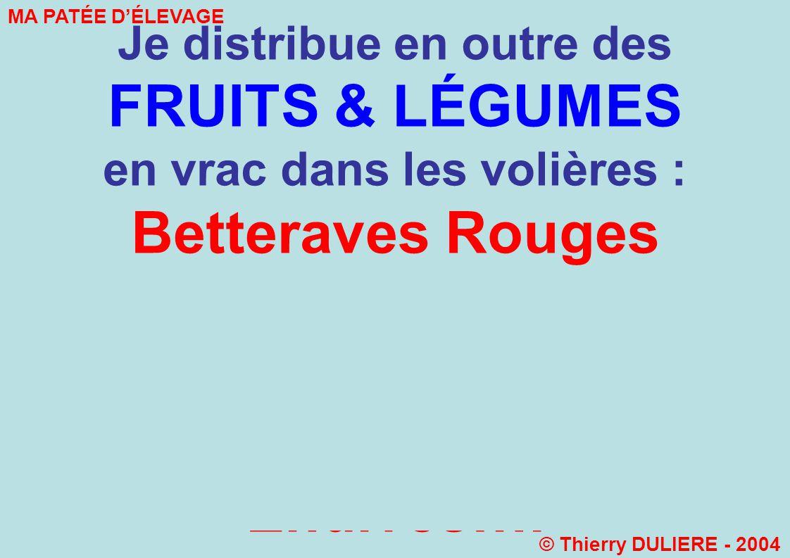Je distribue en outre des FRUITS & LÉGUMES en vrac dans les volières : Betteraves Rouges Pommes Carottes Chous de Bruxelles Endives…. MA PATÉE DÉLEVAG