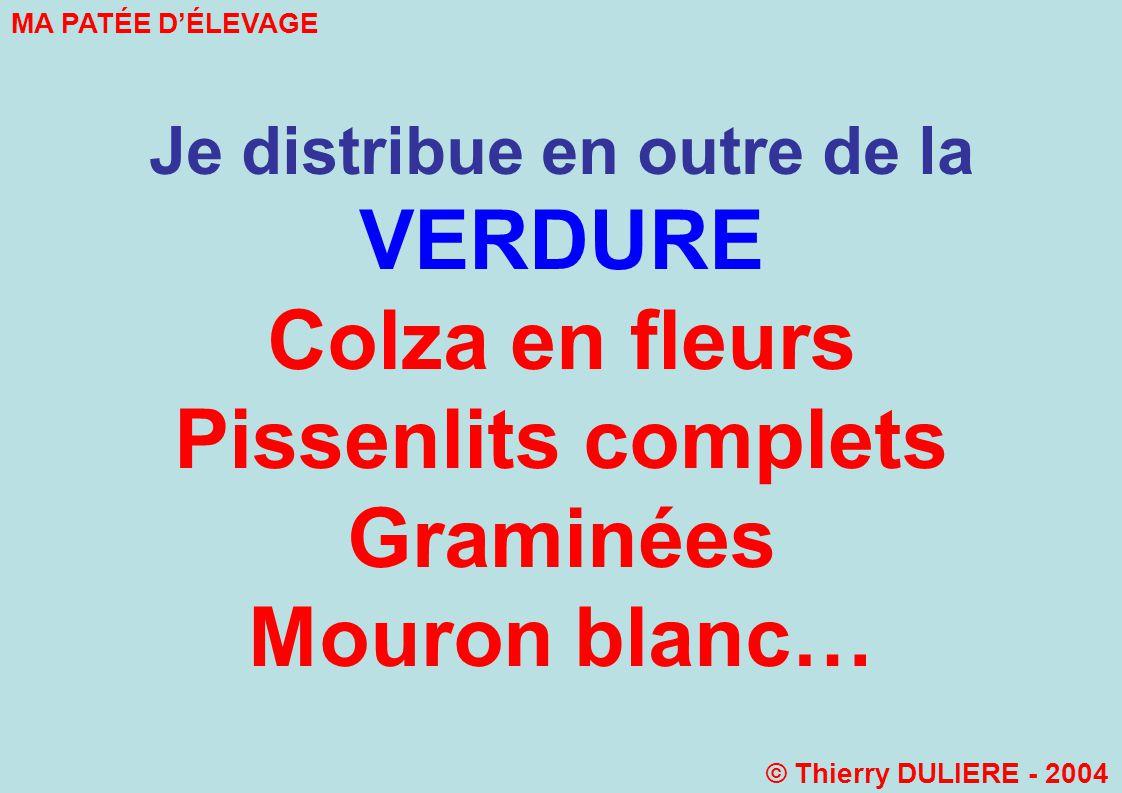 Je distribue en outre de la VERDURE Colza en fleurs Pissenlits complets Graminées Mouron blanc… MA PATÉE DÉLEVAGE © Thierry DULIERE - 2004