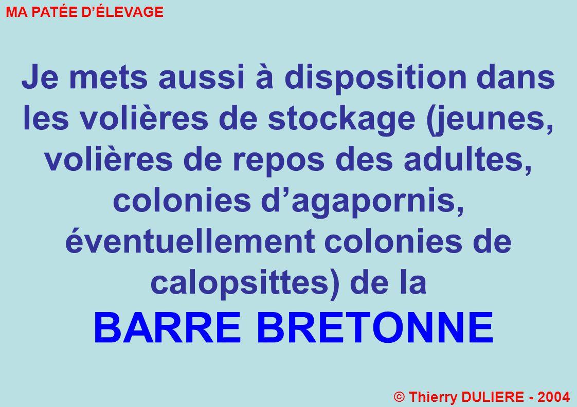 Je mets aussi à disposition dans les volières de stockage (jeunes, volières de repos des adultes, colonies dagapornis, éventuellement colonies de calopsittes) de la BARRE BRETONNE MA PATÉE DÉLEVAGE © Thierry DULIERE - 2004