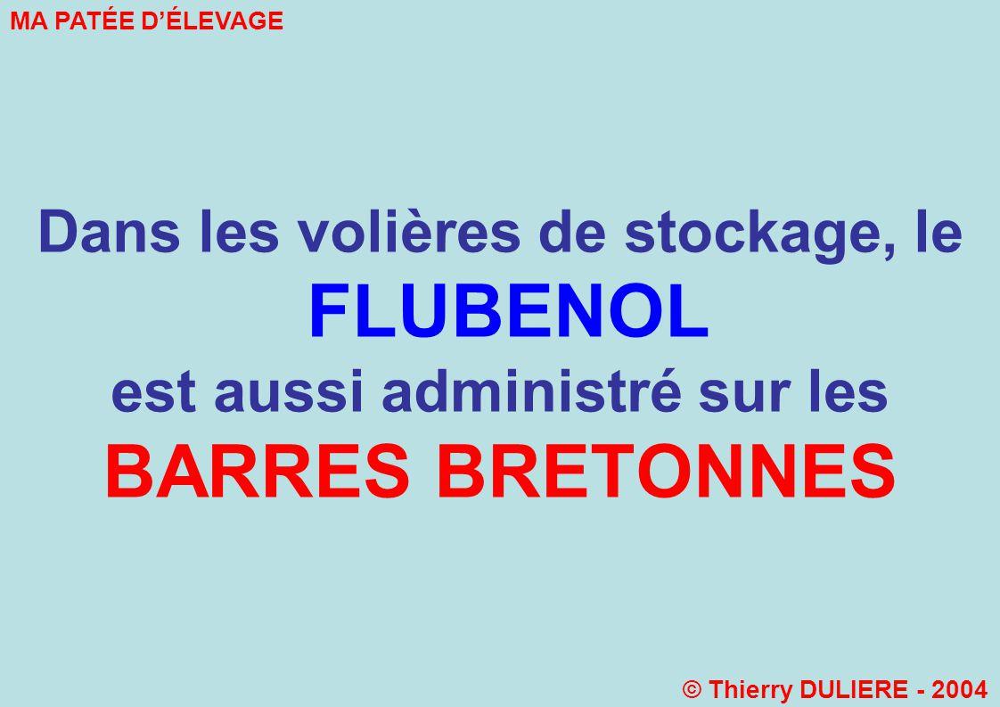 Dans les volières de stockage, le FLUBENOL est aussi administré sur les BARRES BRETONNES MA PATÉE DÉLEVAGE © Thierry DULIERE - 2004