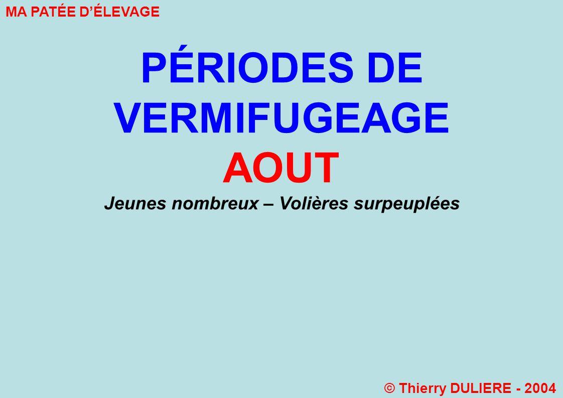 PÉRIODES DE VERMIFUGEAGE AOUT Jeunes nombreux – Volières surpeuplées MA PATÉE DÉLEVAGE © Thierry DULIERE - 2004