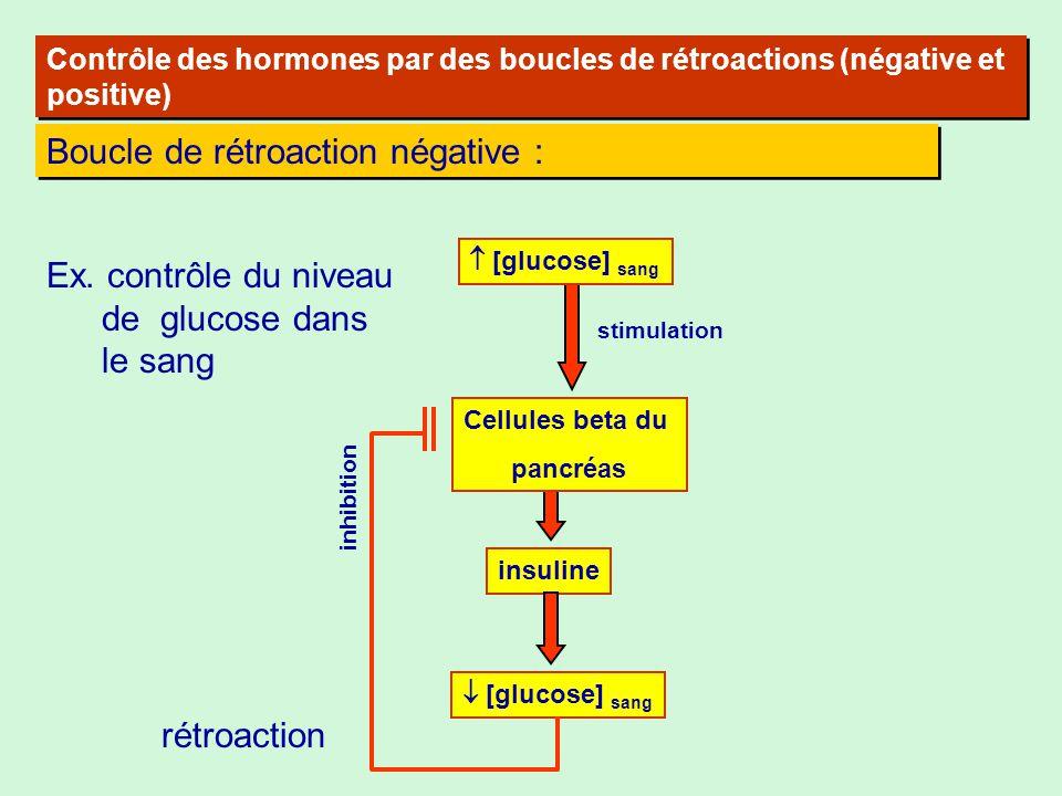 Contrôle des hormones par des boucles de rétroactions (négative et positive) Boucle de rétroaction négative : Ex. contrôle du niveau de glucose dans l