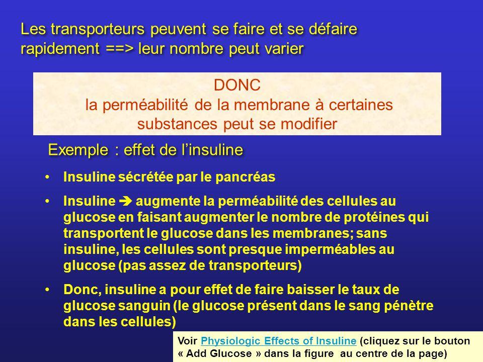 Exemple : effet de linsuline Insuline sécrétée par le pancréas Insuline augmente la perméabilité des cellules au glucose en faisant augmenter le nombr