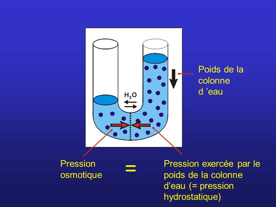 Poids de la colonne d eau Pression osmotique Pression exercée par le poids de la colonne deau (= pression hydrostatique) =