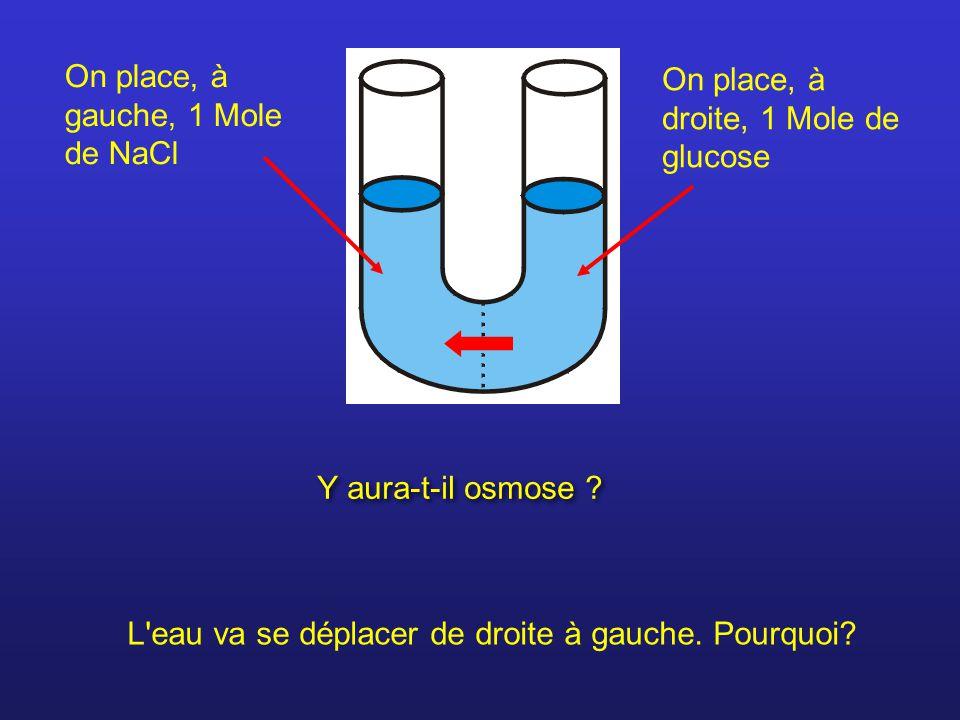 On place, à gauche, 1 Mole de NaCl On place, à droite, 1 Mole de glucose Y aura-t-il osmose ? L'eau va se déplacer de droite à gauche. Pourquoi?