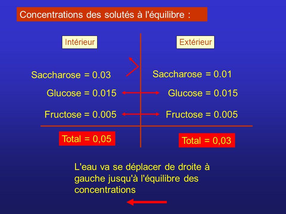 Concentrations des solutés à l'équilibre : Saccharose = 0.03 Saccharose = 0.01 Glucose = 0.015 Fructose = 0.005 Total = 0,05 Total = 0,03 L'eau va se