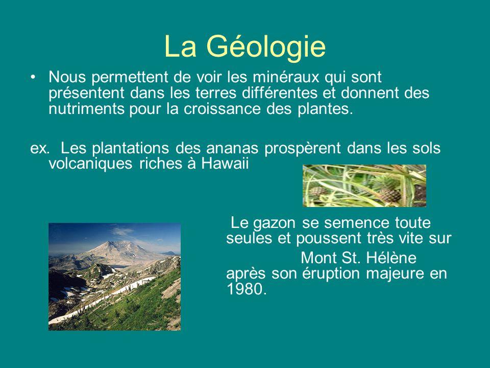 La Géologie Nous permettent de voir les minéraux qui sont présentent dans les terres différentes et donnent des nutriments pour la croissance des plan
