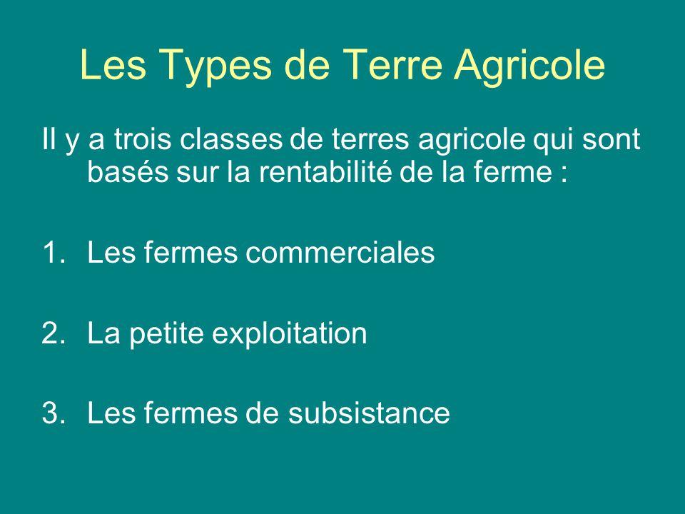 Les Types de Terre Agricole Il y a trois classes de terres agricole qui sont basés sur la rentabilité de la ferme : 1.Les fermes commerciales 2.La pet