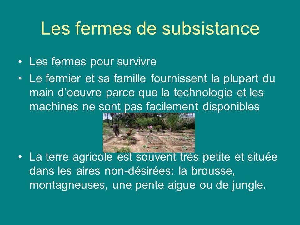 Les fermes de subsistance Les fermes pour survivre Le fermier et sa famille fournissent la plupart du main doeuvre parce que la technologie et les mac